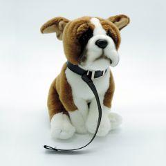 Hund Boxer mit Leine