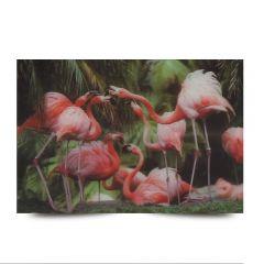3D Fotokarten Flamingos - Postkarten 16cm x 11cm
