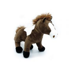 Pferd stehen braun weiß gescheckt